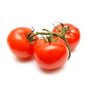 ferme-umami-tomate