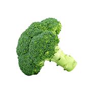 ferme umami brocolis
