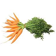 ferme-umami-carottes