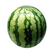 ferme-umami-melon-deau