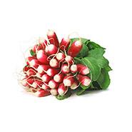 ferme-umami-radis-d'hivers